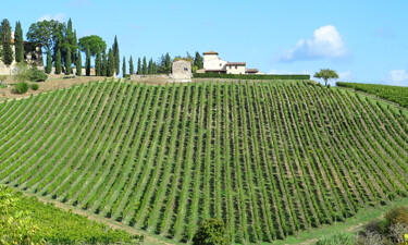 Gabbiano Tuscany SWT 375