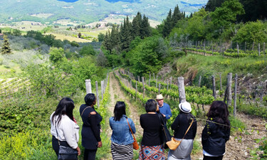 A Tuscany wine tour from Florence