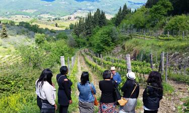 Girls in Brogioni Vineyard 375