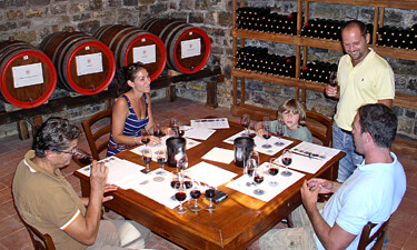 A Tuscany Wine Class in a winery near Florence