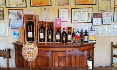 Super Tuscan wines at Bazzini winery in Chianti