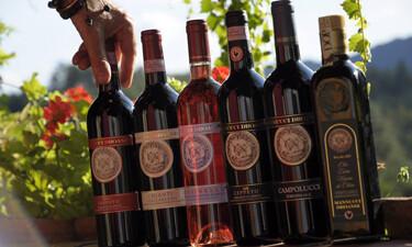 Bottles Super Tuscan Wines 375