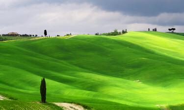 Brunello Montalcino Cloudy