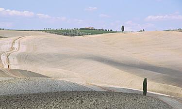 Brunello Montalcino Valdorcia Desert