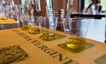 Tasting of Tuscany olive oil by the glass