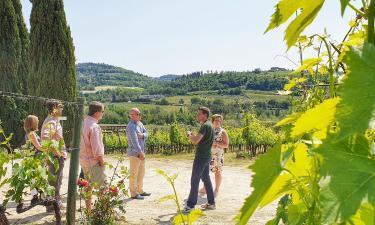 Touring a Tuscan Vineyard