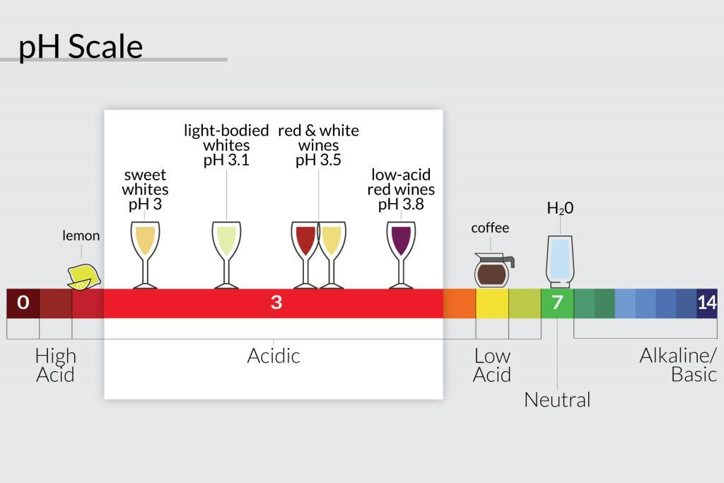 Chart showing the meaning of acidic wine
