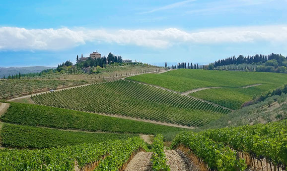 A Photographic interlude during a Tuscany wine tour