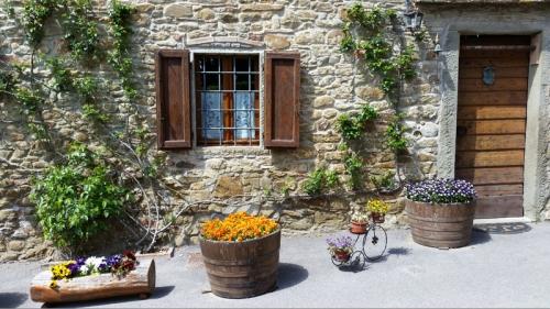 Tuscan doors and windows