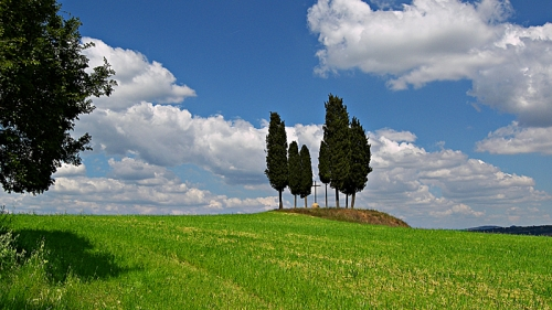 Famous scenes of Tuscany