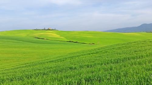 Tuscany near Monticchiello