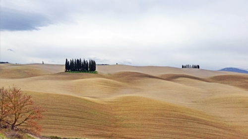 Famous scenes of Tuscany April 2018