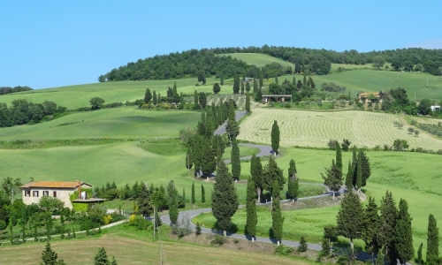 The famous cypress tree road in Tuscany